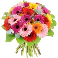 5100 - Gerbera Bouquet