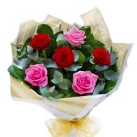 3662 - Red and Pink roses